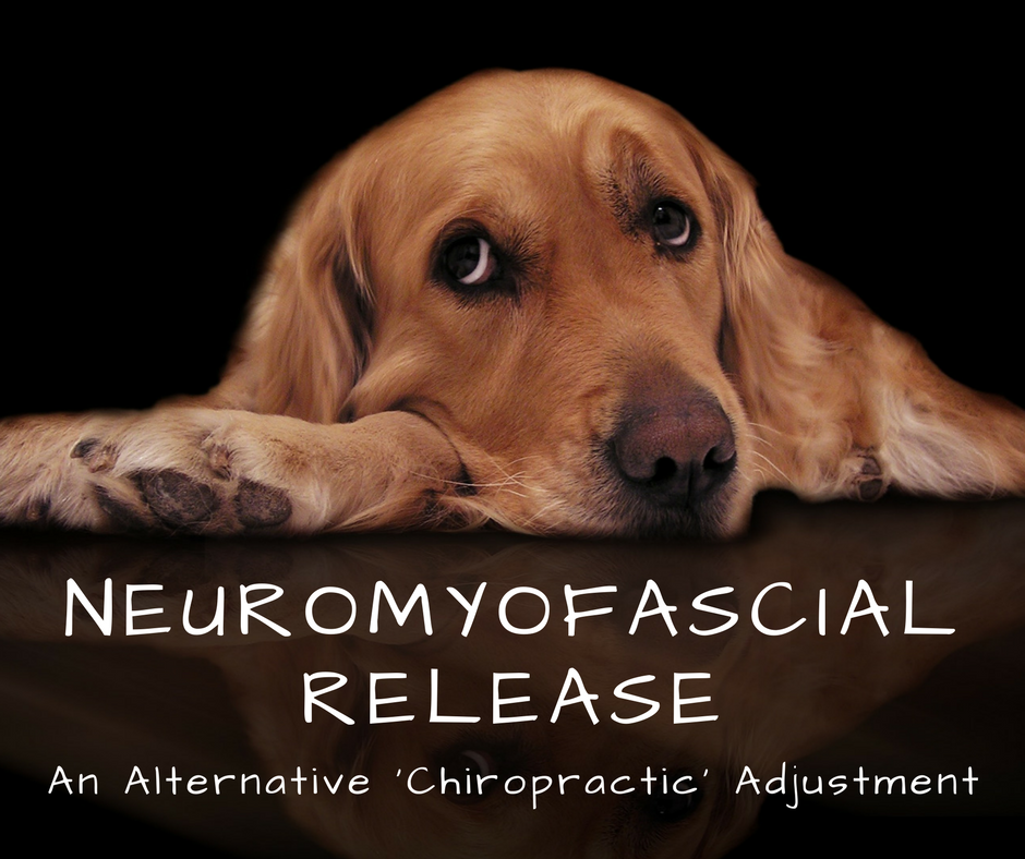 neuromyofascial release-2.png