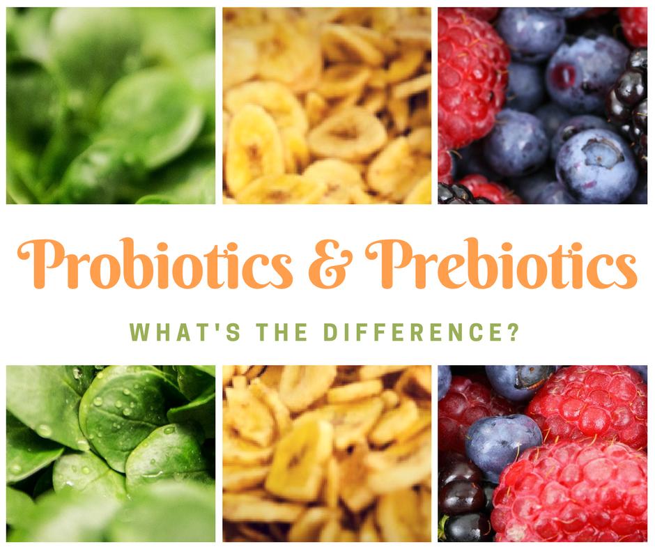 Probiotics and Prebiotics.png