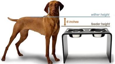 canine_muscleworks_dog_feeder