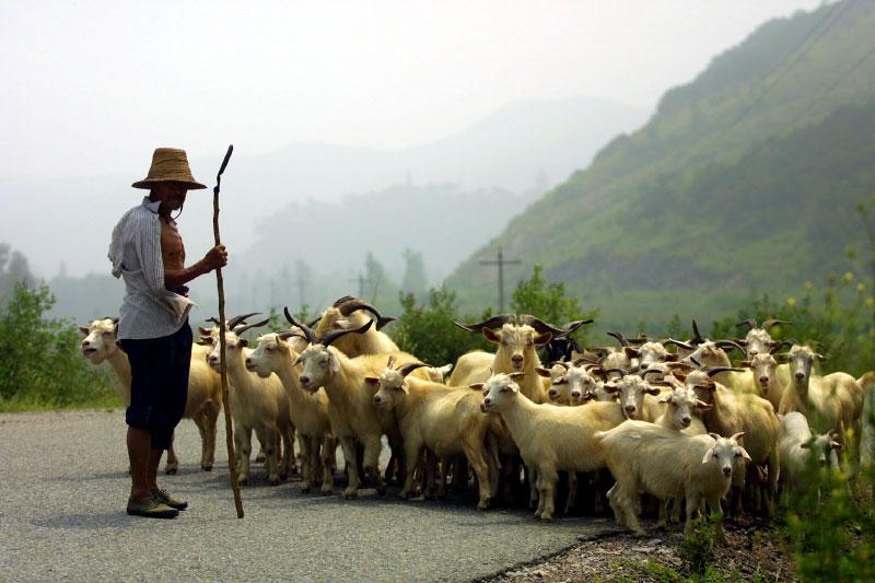 China-Toni-Axelrod-©-axelphoto.jpg