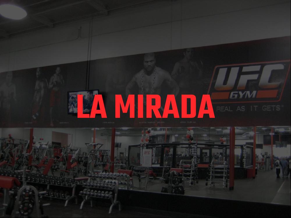LA MIRADA.png