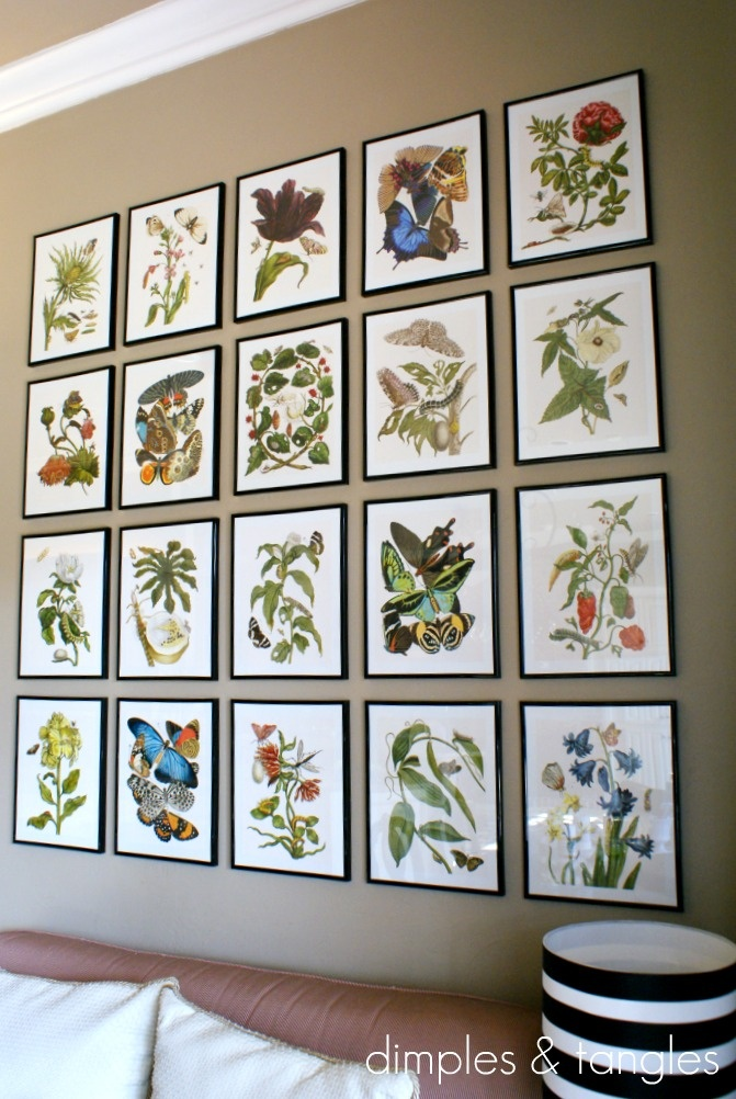 I'm finally going to frame the vintage botanical prints I've had tucked away and hang them in my breakfast room!