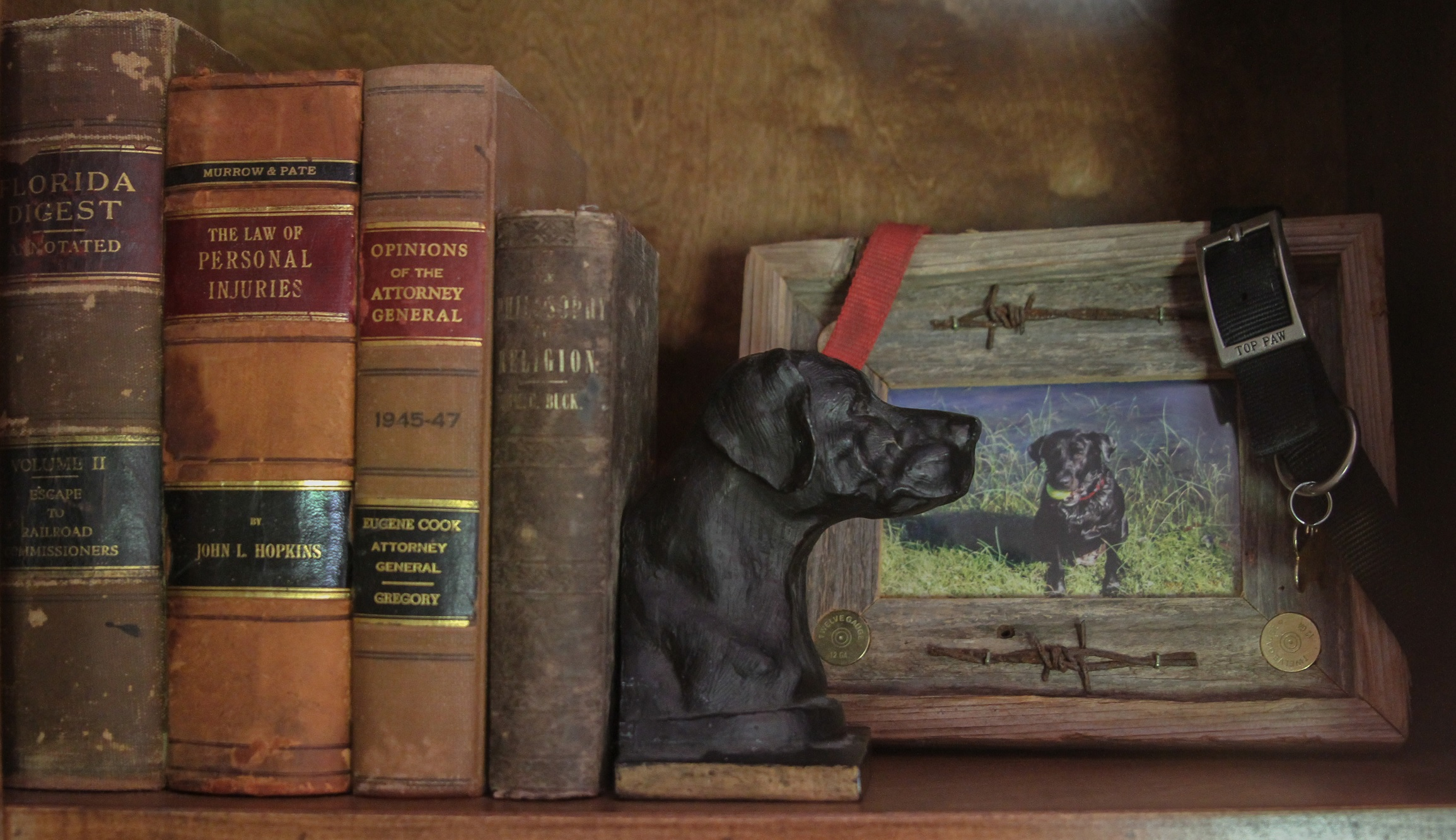 Study Shelf Detail