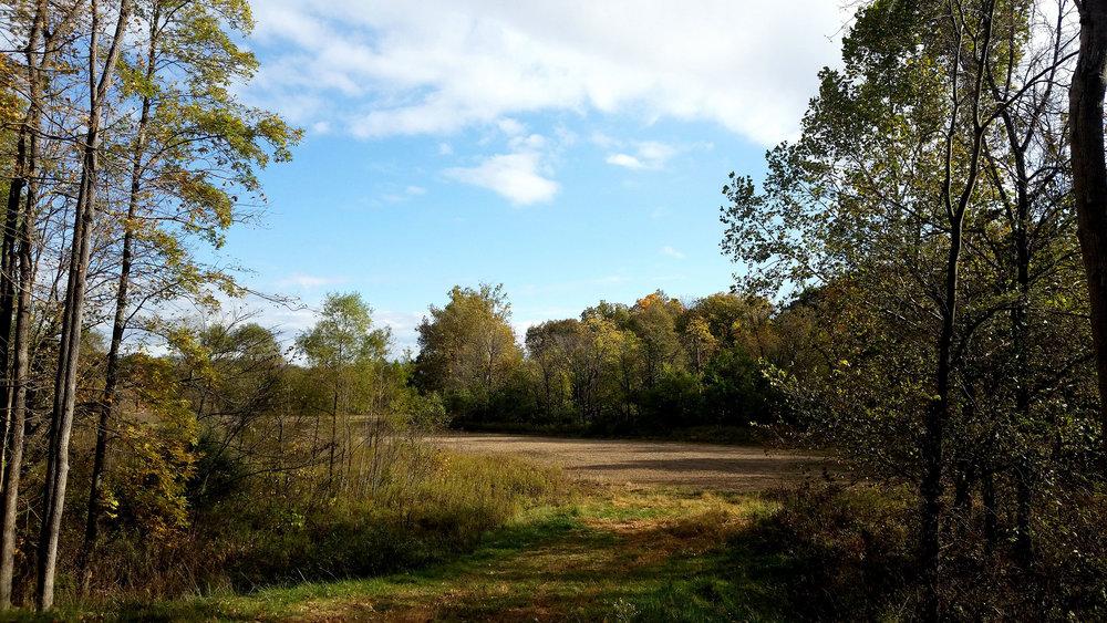 Fall-Photo1.jpg