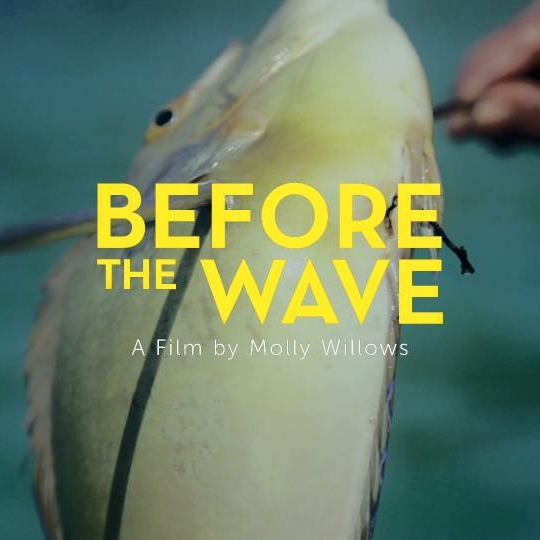 Before the Wave by Molly Willows