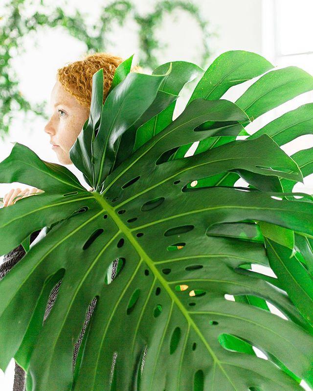 my friend @thebotanicalstudio has huge palms. 😅🙄😬😂