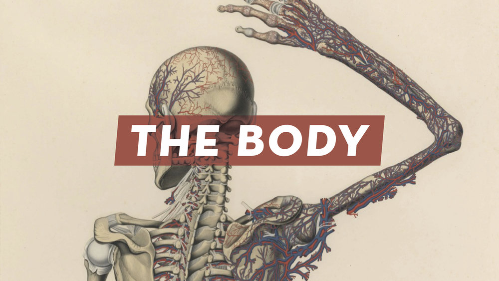 The Body Nov 20.001.jpeg