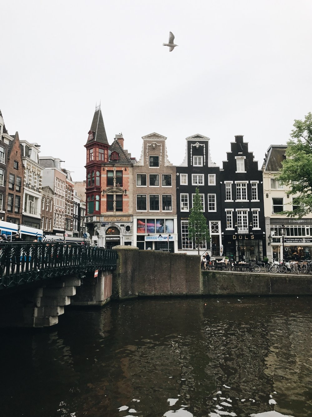 BEGINNER'S GUIDE TO AMSTERDAM -