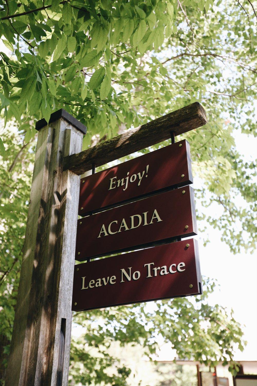 acadia_national_park.JPG