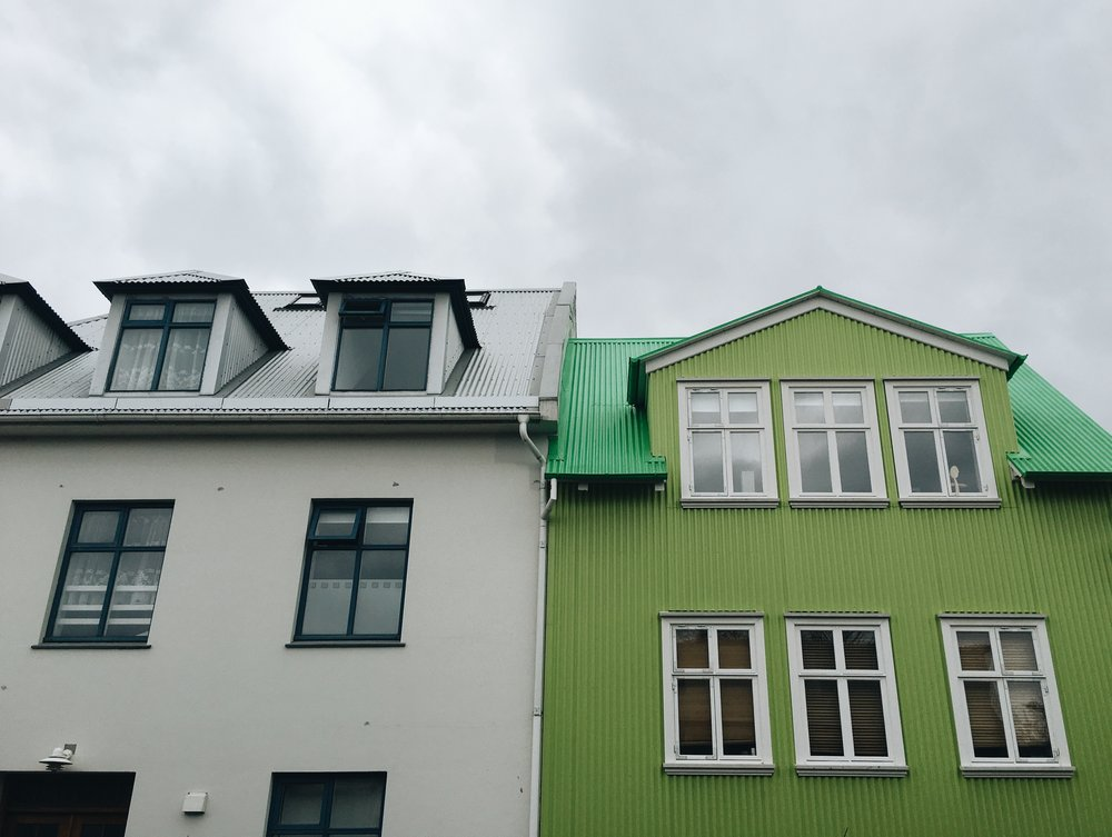 Reykjavik in One Day  -