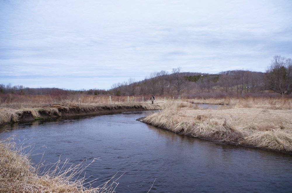 Pictured above: Riparian corridor restoration on the Upper Paulinskill River, New Jersey Highlands Cluster.