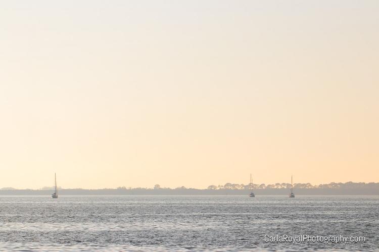 dunedin-marina-sailboats.jpg