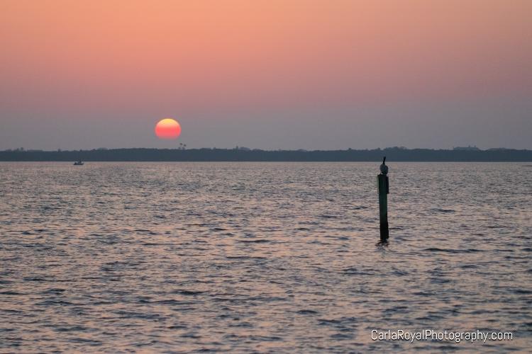 dunedin-sunset.jpg