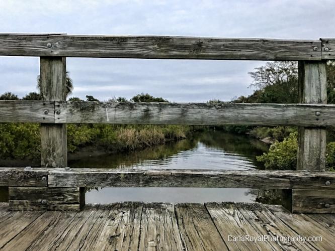 dunedin-canal-bridge.jpg