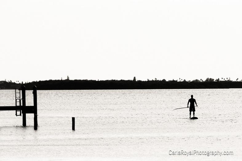 dunedin-paddle-board.jpg