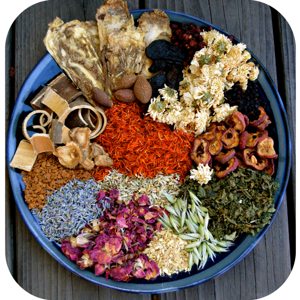 herbal medicine nutrition berkeley california shoshana uribe manzanita wellness clinic