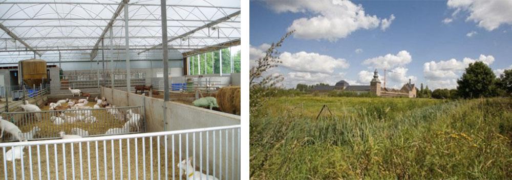 't Goerenhof (Lummen) en het natuurdomein van de Abdij van Herckenrode (Hasselt)
