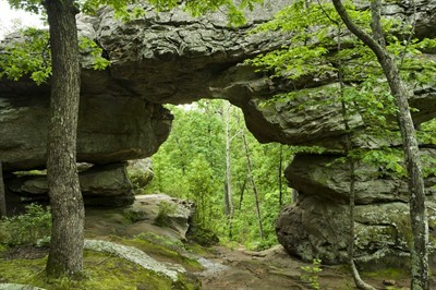 Natural Bridge (petit Jean State Park)