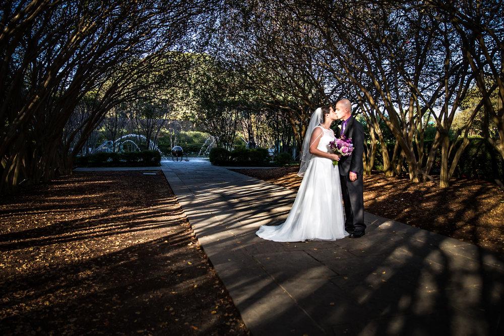 Dallas Arboretum Wedding Crepe Myrtle Tunnel Turtle Fountain Garden Couple Bride Portrait