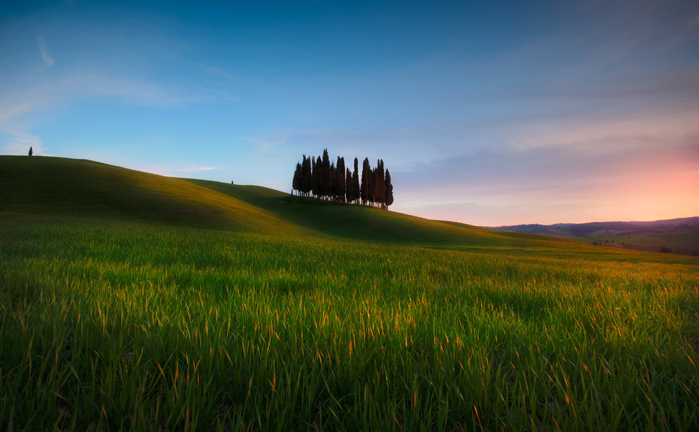 Tuscan Light   These cypress trees near San Quirico d'Orcia must be among the most photographed trees in the world. It's still impossible to ignore them though, there's just something so appealing about their location, standing isolated in the rolling hills of Tuscany.