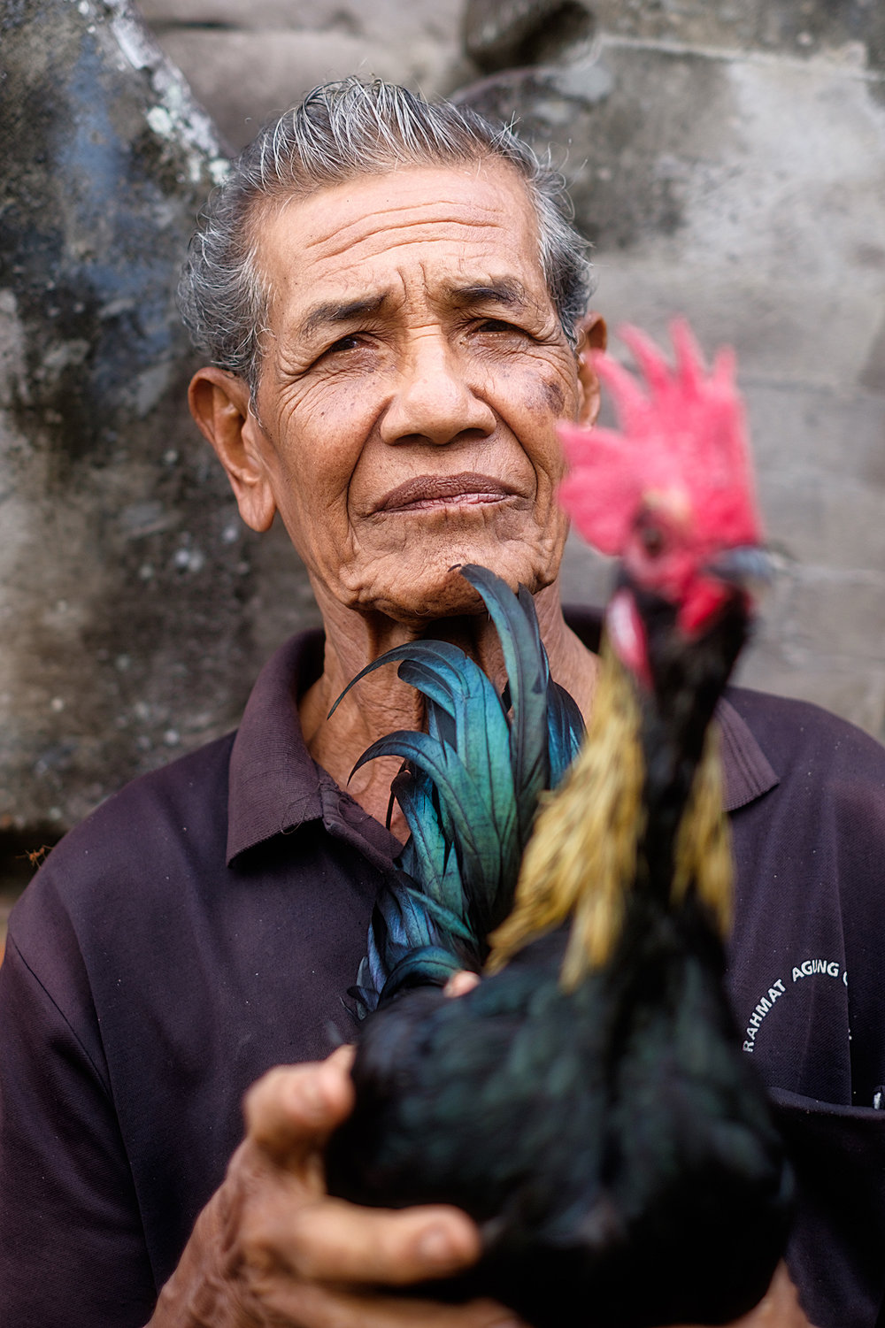 Man at a Cock Fight   While we were out walking through the fields and small villages surrounding Ubud in Bali we came across a cockfight, something which is legal in Indonesia. This is a portrait of one of the men there with his bird.
