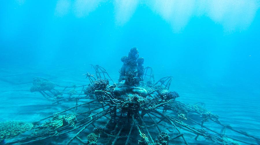 Underwater1.jpg