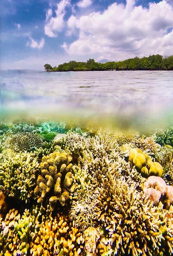 Underwater20.jpg