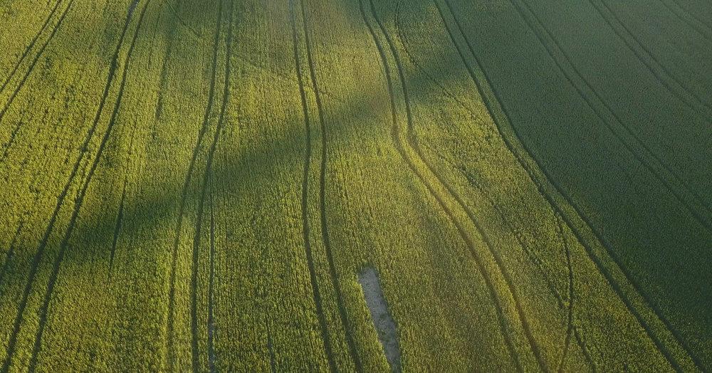 Terrepile Aerial 3.jpg