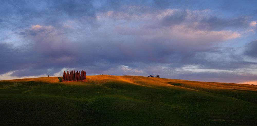 Cypress3.jpg