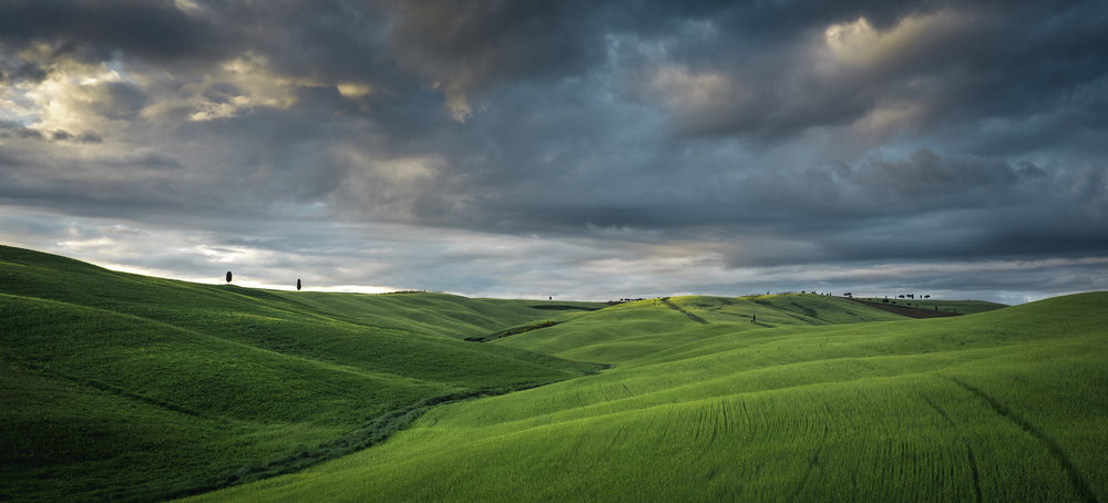 The valley of rolling hills, lush fields and cypress trees just outside San Quirico at sunset.