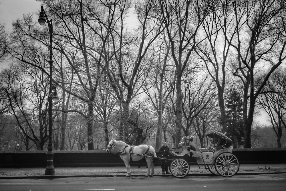 Central Park West. Columbus Circle. New York City. 2017.