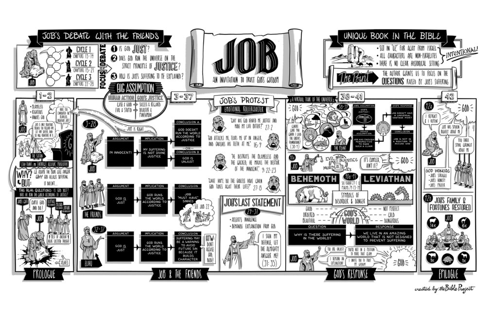 17-Job-FNL.jpg