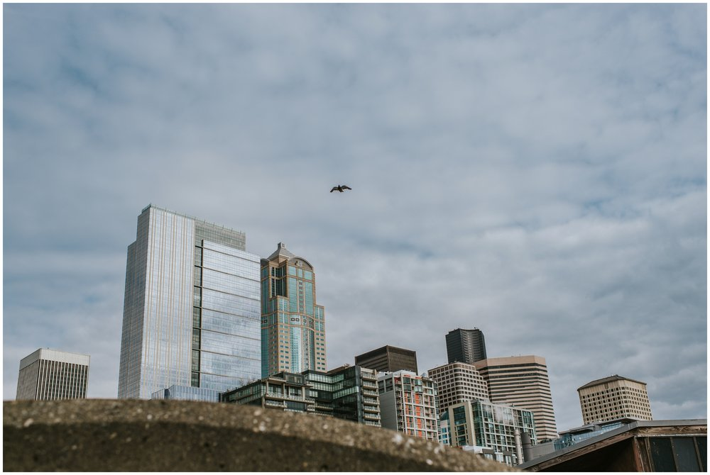 Seattle Washington Skyline  | Seattle Engagement Photographer www.riversandroadsphotography.com