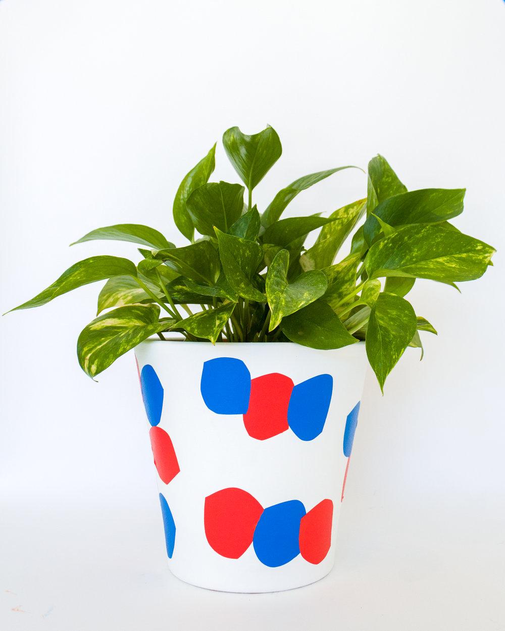 Nick Jaskey<br><em>Ceramic Pots</em>