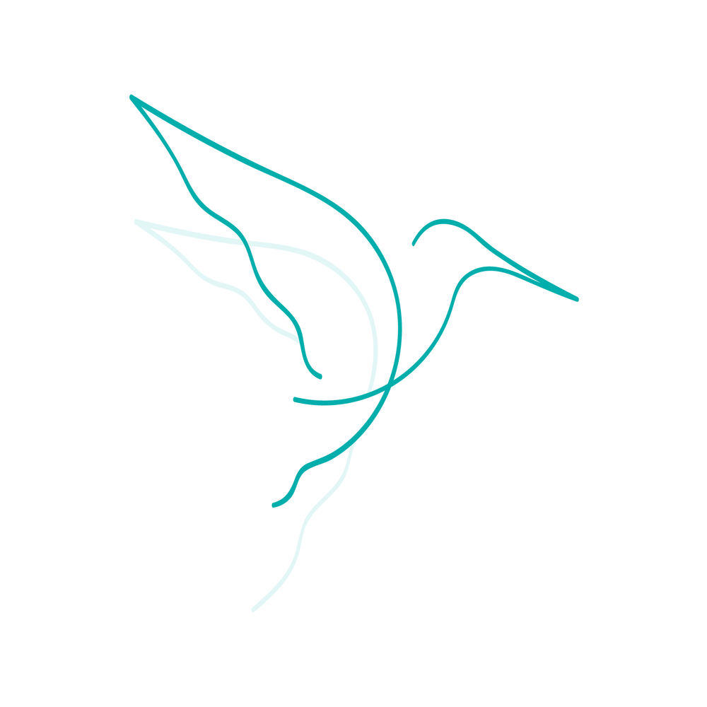 hummingbird_acupuncture-01.png