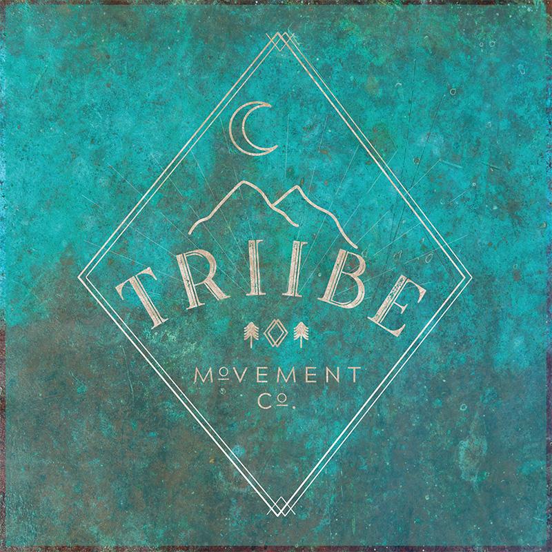 Triibe Logo Concept