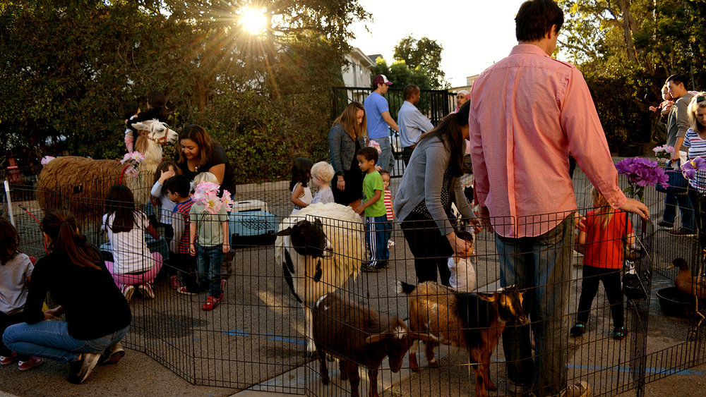 Students, teachers and parents enjoy a visiting petting zoo