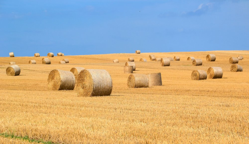 Get it? bales of hay all rolled up? Rolling? Roll?    .                                        ...Save me from myself.