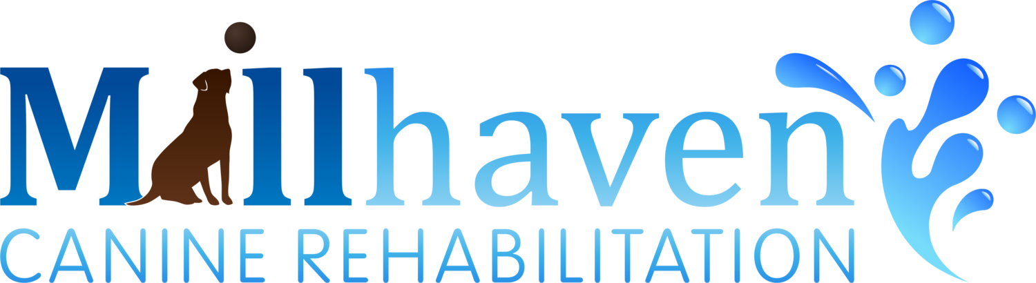 Millhaven Canine Rehabilitation