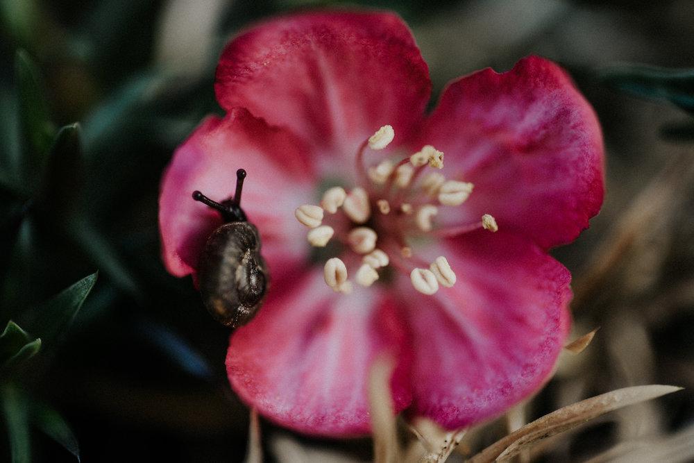 springbreak-56.jpg
