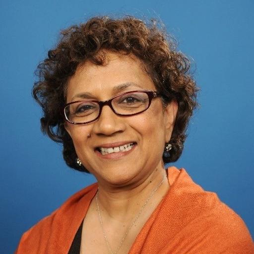 geeta gupta - Senior Fellow, United Nations Foundation