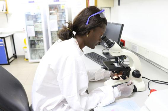 African women working in global health: closing the gender gap in ...