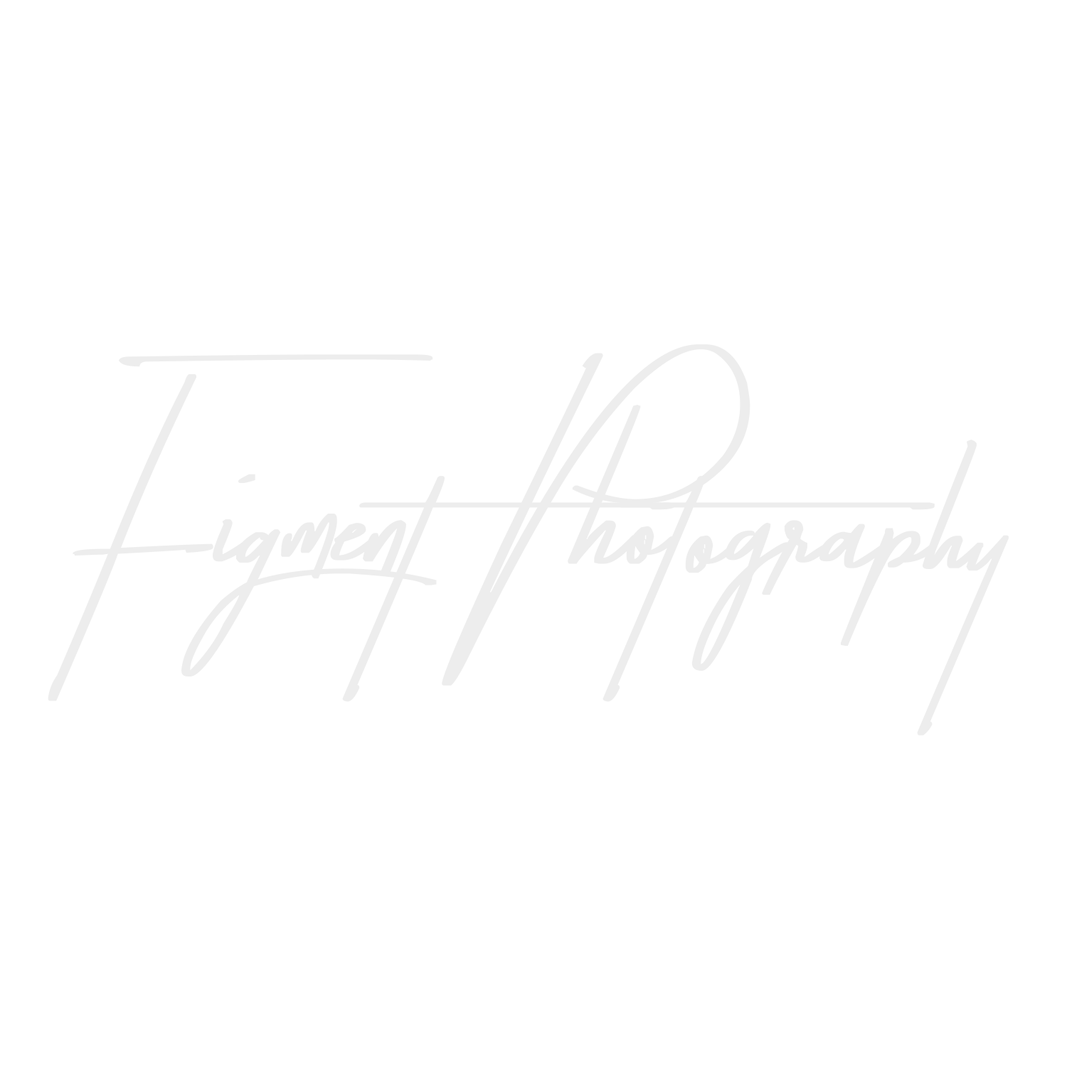 FIGMENT PHOTOGRAPHY