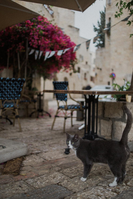 Israel470.jpg