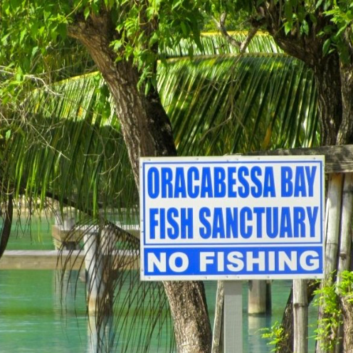ORACABESSA BAY FISH SANCTUARY.png