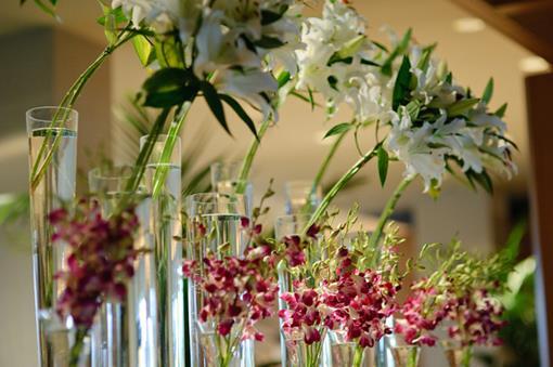 omni floral.jpg