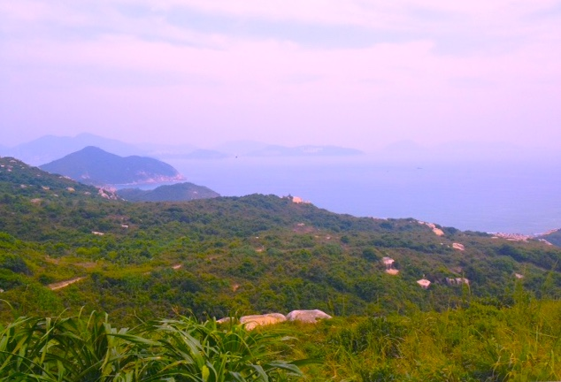 Lamma overview copy.jpg