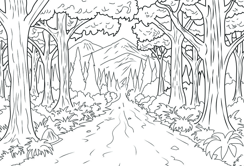 Forest_Front.jpg