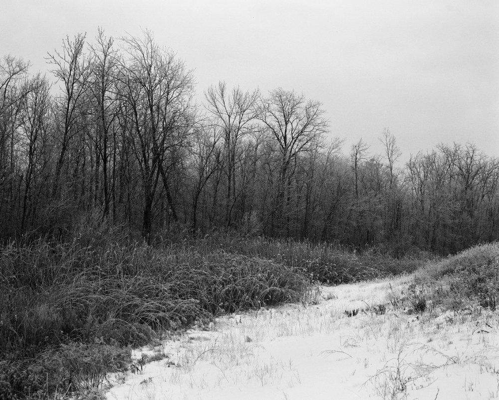 Black&White-38.jpg