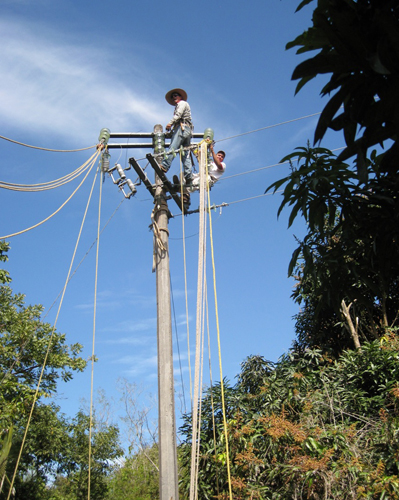 CFE Experts Hanging High Tension Cable: They Don't Leave this Job to the Contractors.
